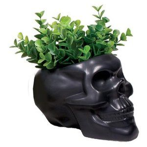 Black Skull Planter Storage Dish